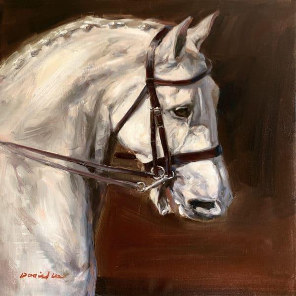 horse 3 1500
